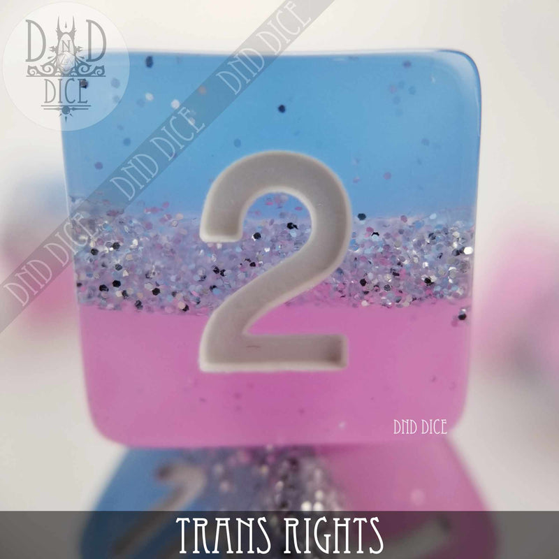 Trans Rights Dice Set