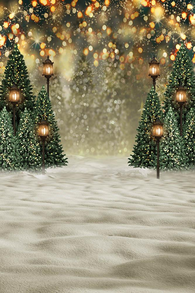 Christmas Trees Outdoor backdrop UK Snowy Background for Photo Shoot  G-1441