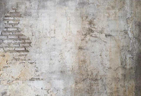Grunge Backdrops Brick Wall Backgrounds Custom Photo Backdrops G-559
