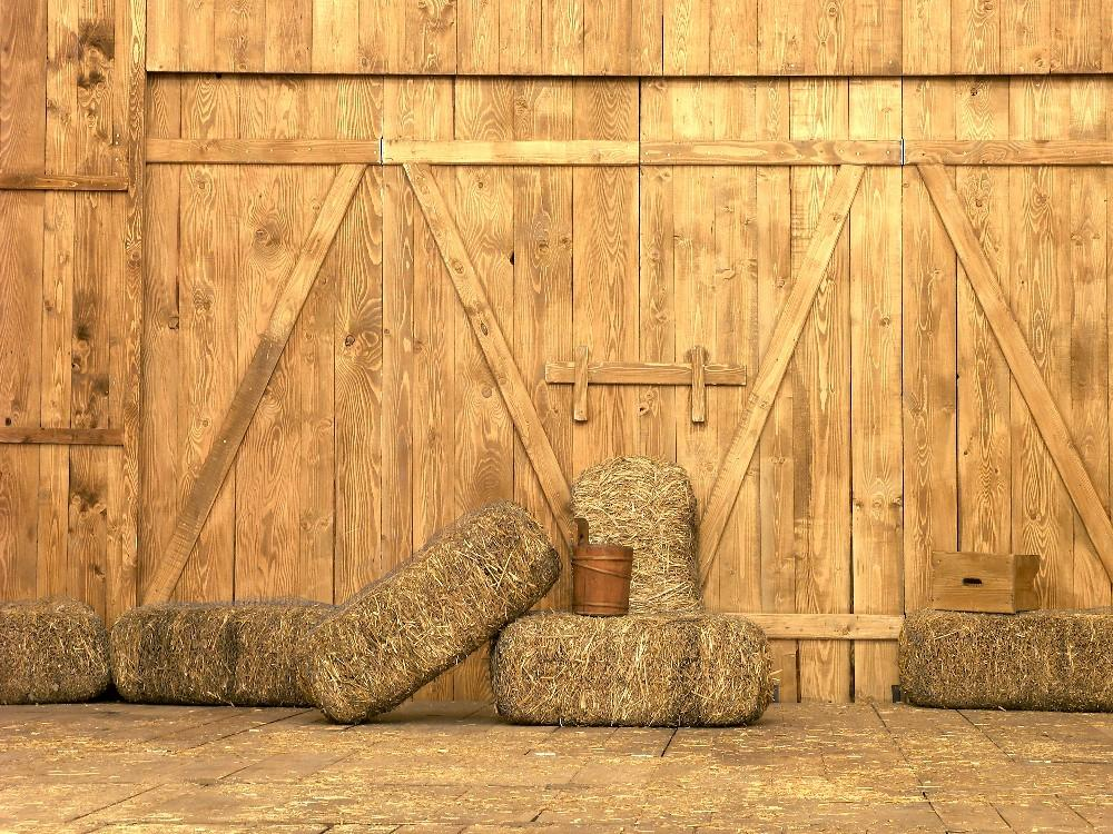 Barn Door Straw Farmhouse Photo Studio Backdrop DBD-19354