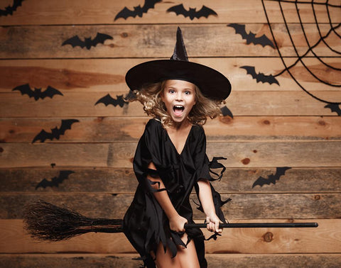 Spider Web  Bat Wood Wall Halloween Backdrop UK for Photography DBD-H19147