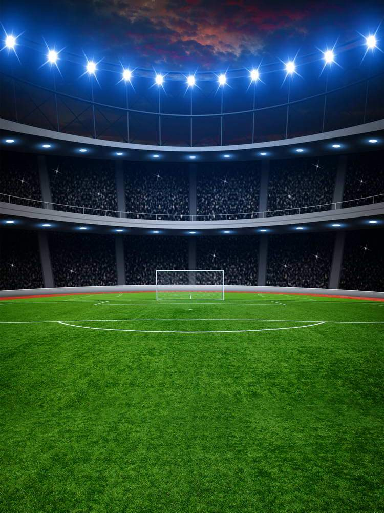 Football Field Green Grass Goal Net Backdrop for Photography MR-2267