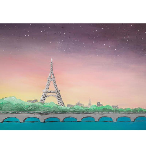Paris Theme Baby Birthday Backdrop for Photography NB-251