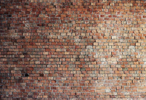 Vintage Red Brick Wall Photo Backdrop  D249-1