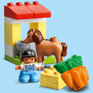 Horse Stable and Pony Care