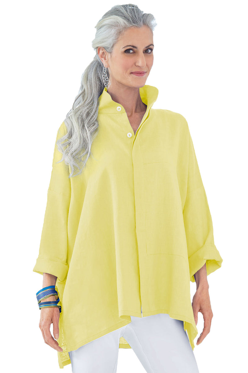 Lemon Stand Collar Button Front Blouse - GHA Discount