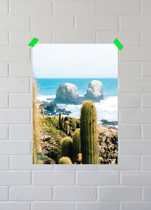 Load image into Gallery viewer, FUCKING CONFUSED 2020 Cactus Party Poster