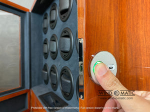 12 Rosewood Watch Winder