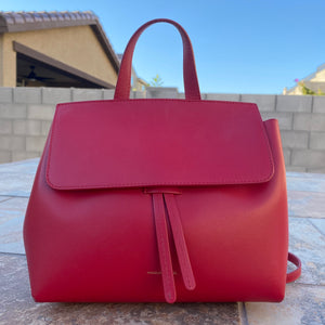 Mansur Gavriel Small Lady Crossbody