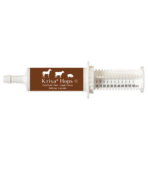 Phyto Pets Oral Paste for Horses & Livestock - PeakHealthCenter