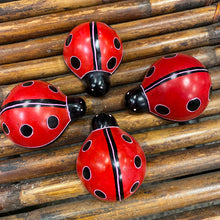 Load image into Gallery viewer, Soapstone Ladybug