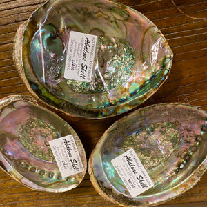 Abalone Shells for Smudging, Farm Raised