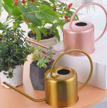 Load image into Gallery viewer, Metal 1300ml watering can (multiple colours)
