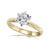 CAROLINA - 1.00ct Diamond 6 Claw Solitaire Ring