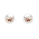 Sybella Freshwater pearl rose gold plate star studs