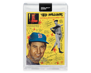 Ted Williams by Sophia Chang Silver / Edition of 5