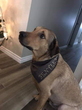 Load image into Gallery viewer, Personalized Dog bandanas