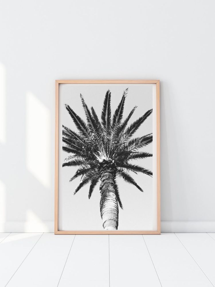 Wooden picture frame with picture of a tall palm