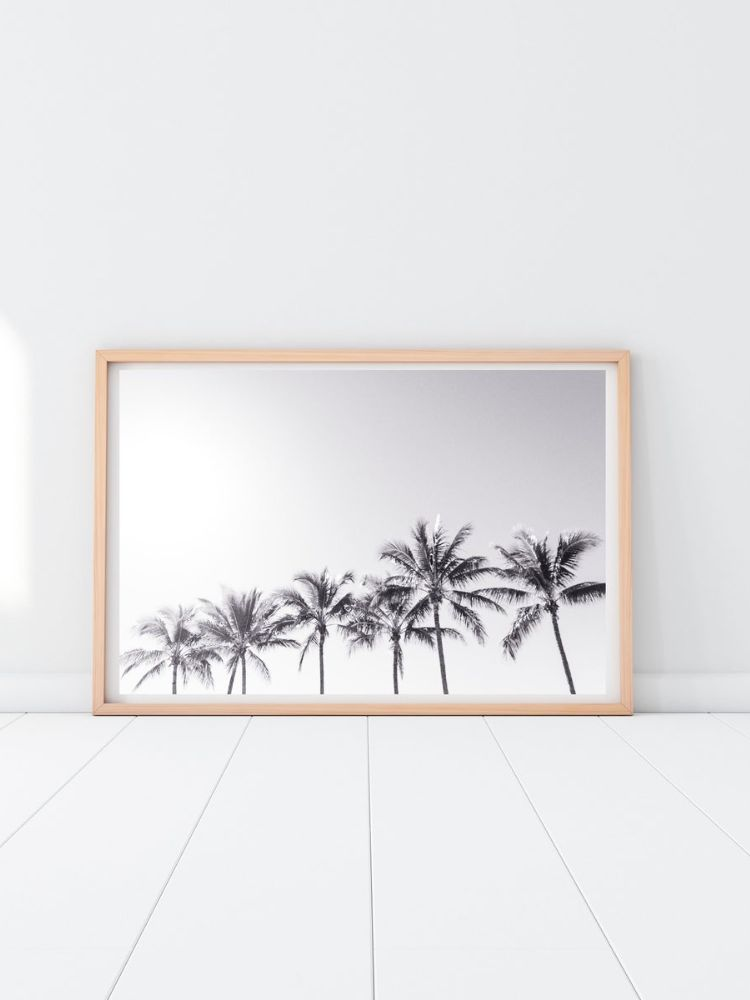 Wooden Picture frame containing black and white picture of palm trees