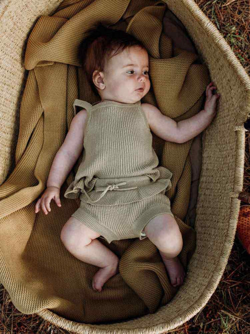 Baby lying in a moses basket