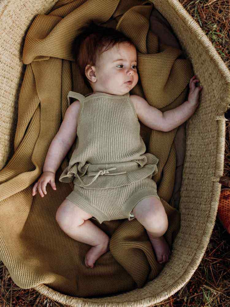 Baby in a moses basket