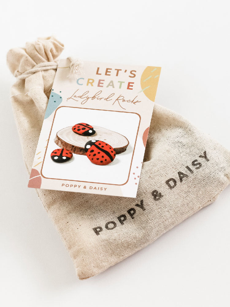Calico bag for the Poppy And Daisy Ladybird rock painting kit