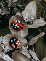 Ladybird rocks on a dried gum branch