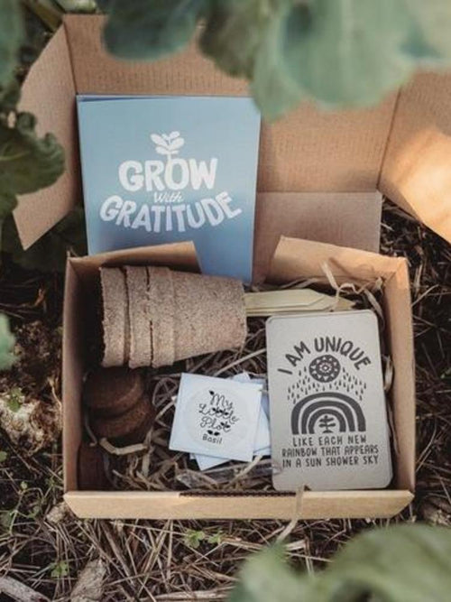 grow-with-gratitude-kit-eco-friendly-kids-toy