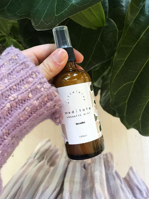 Willelaine Aromatherapy Meditate Aromatic Mist against a ficus plant