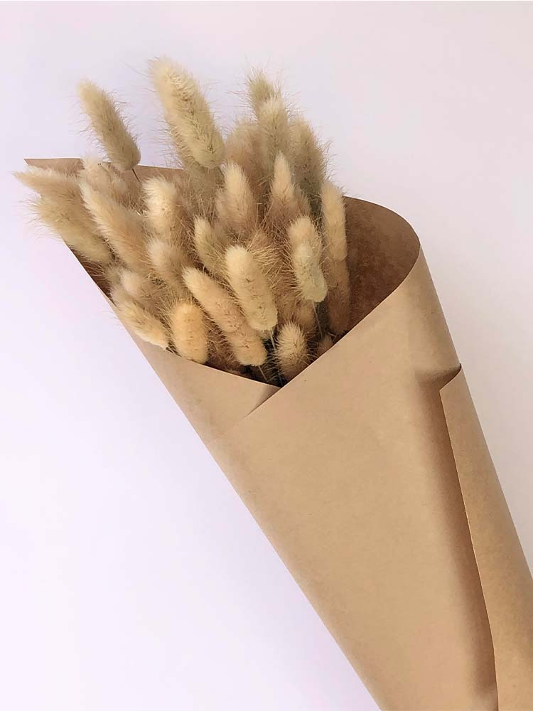 Bunch of dried bunny tail flowers wrapped in brown paper
