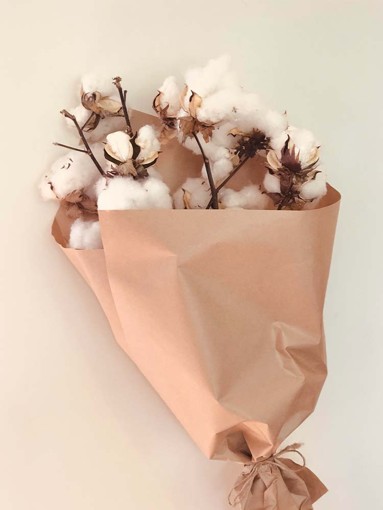 Dried cotton wrapped in brown paper