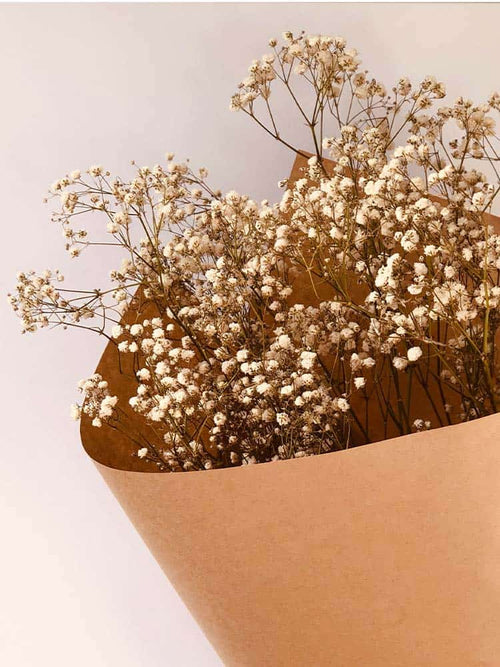Dried baby's breath wrapped in brown paper