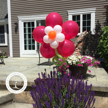 Load image into Gallery viewer, Bright Balloon Flower