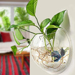 Wall-Hanging Fish Bowl Acrylic Wall-Mounted Plant Pot