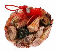 SA06 Assorted SeaShells in Mesh Net Bag - 500 grams