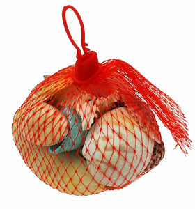 SS6008 Assorted Polished Shells in Mesh Net Bag - 1 KG Bag