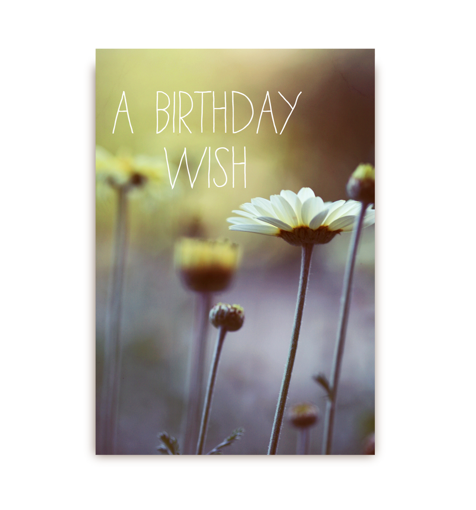 A Birthday Wish Postcard - Lagom Design