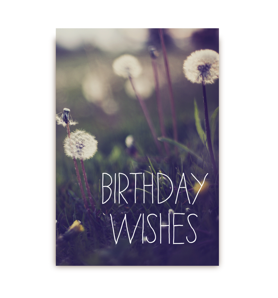 Birthday Wishes Postcard - Lagom Design
