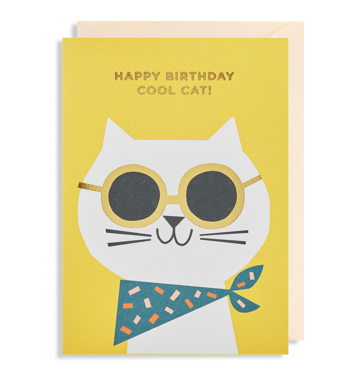 Happy Birthday Cool Cat Greeting Card By Ekaterina Trukhan Lagom