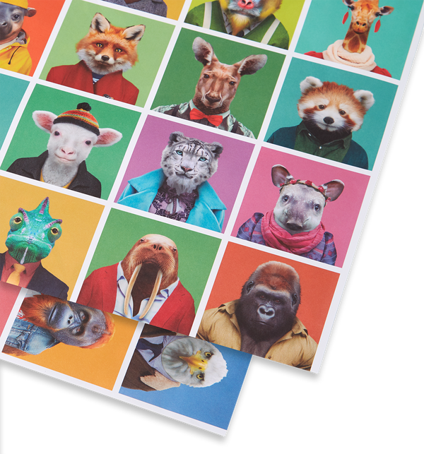 Zoo Portraits Wrap - Lagom Design