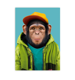 Common Chimpanzee - Lagom Design