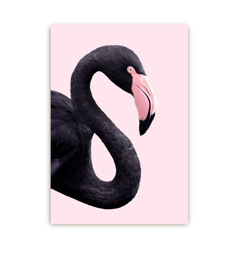 Black Flamingo - Lagom Design