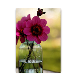 Dahlias In A Blue Jar - Lagom Design