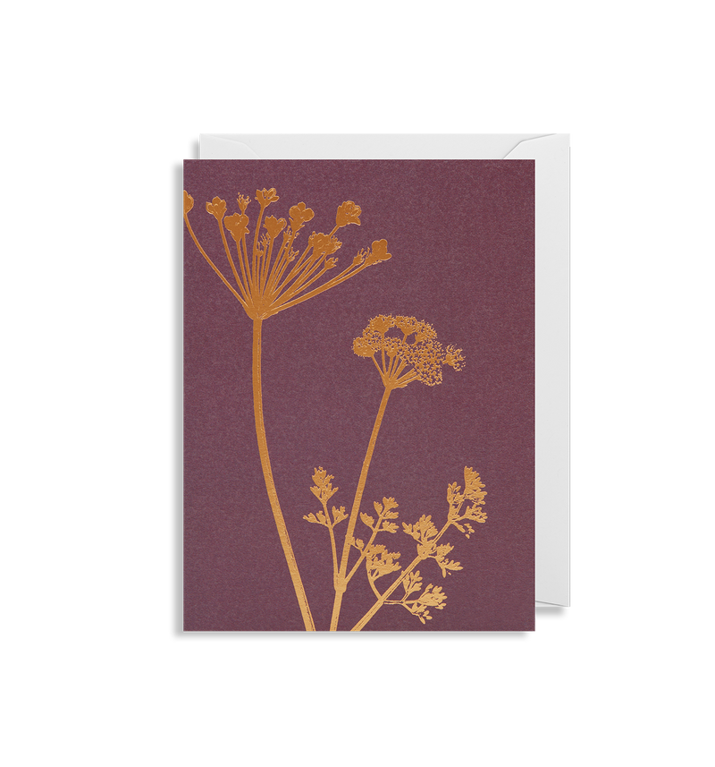 Cow Parsley - Lagom Design