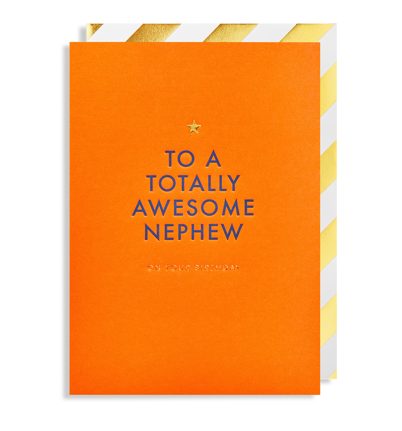 To A Totally Awesome Nephew On Your Birthday Greeting Card By Postco