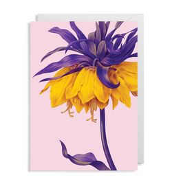 Yellow Crown Imperial - Lagom Design