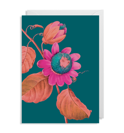 Passion Flower - Lagom Design