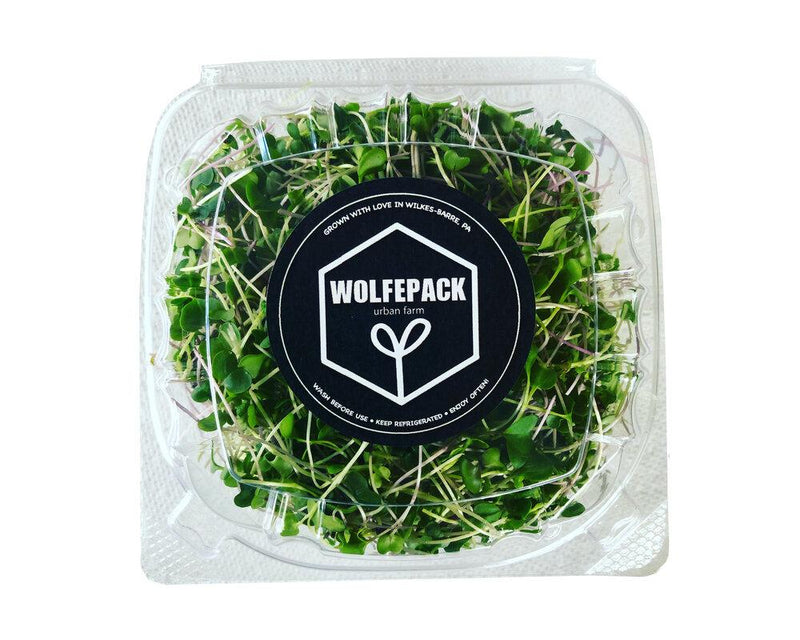 Mixed Microgreens - Grocer Collective