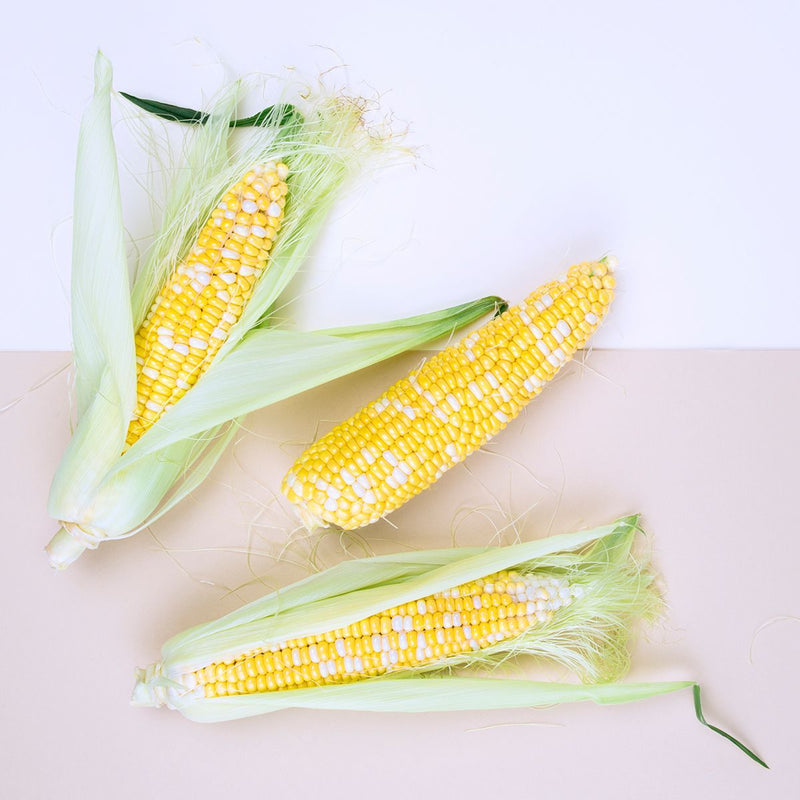 Organic Bi-Color Corn - Grocer Collective