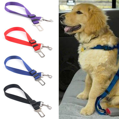 Newest Pet/Dog Car Travel Safety Seat Belt - Toys For A Pet
